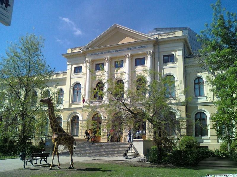 """Expozitie: """"File din natură"""" la muzeul Grigore Antipa din Bucuresti"""